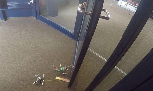 dronok.jpg