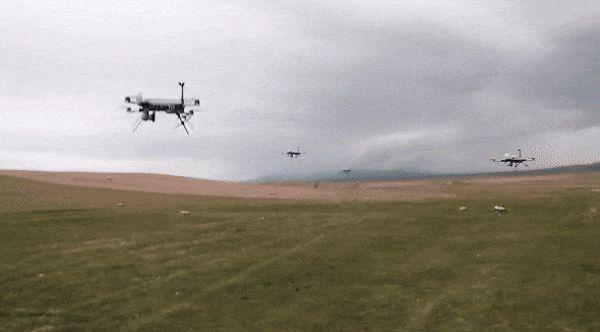 dronok0_3.jpg