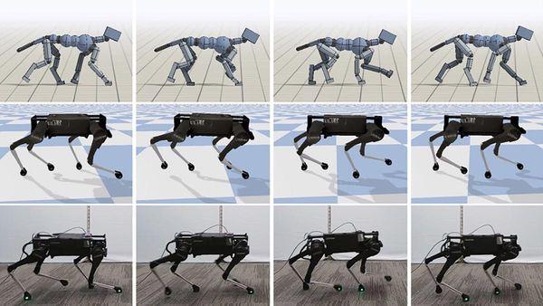 google_robotkutya.jpg