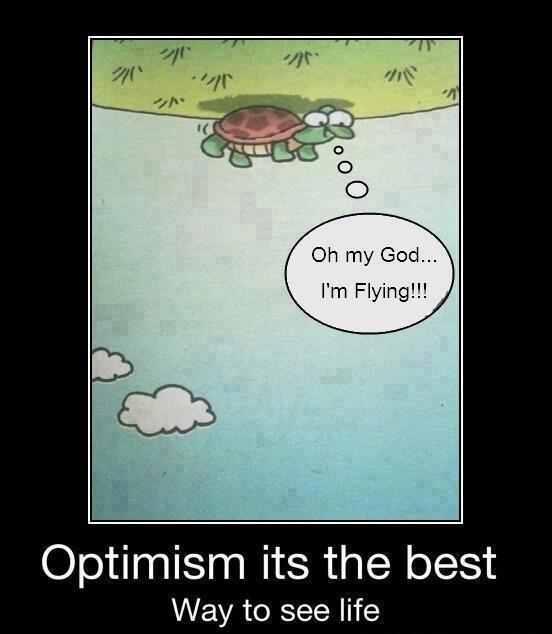 optimist turtle.JPG
