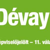 Dévay Boróka, 11. egyéni választókerület