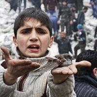 Egy szíriai beavatkozás: