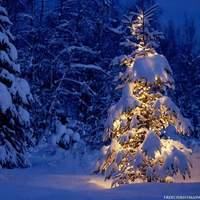 """Karácsony """"demokratikus"""" üzenete minden jóakaratú emberé"""