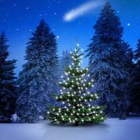 Boldog Karácsonyt!