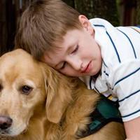 Mit tehet egy szülő az autista gyermeke sikeres álláskereséséért?