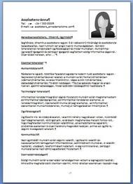 önéletrajz adminisztrációs munkára Asszisztensek, adminisztrátorok önéletrajzai   JobAngel önéletrajz adminisztrációs munkára