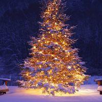 Kis karácsony, csonka karácsony