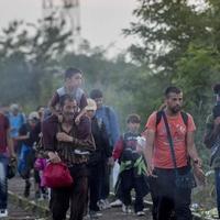 Miért elvetélt ötlet a menekültkvóta?