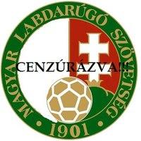 A magyar zászlót is ki fogják tiltani a stadionokból?