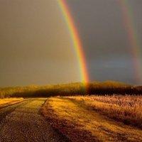 Imaginary rainbow II.