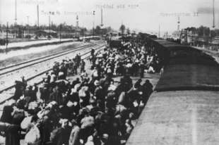 Itt vannak a rohadékok, akiket Eisenhower emlegetett! Auschwitzi tettesnek sem hisznek?