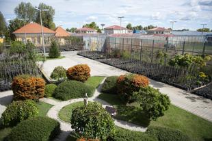 Börtönélet Magyarországon