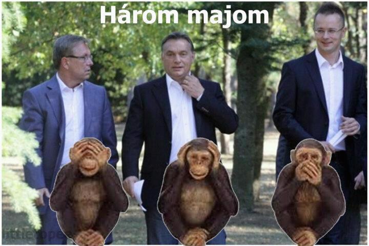 harom_majom_ahumor_network_hu.jpg