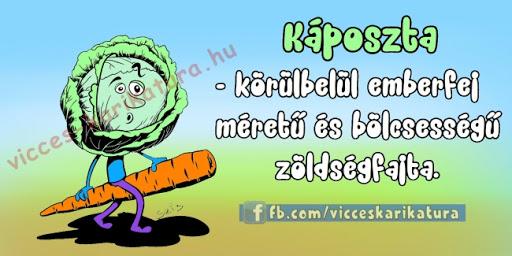 zoldseg-vicces_karikatura.jpg