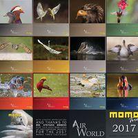 Légvilág címmel jelent meg a Momo-naptár