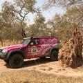 Két nap múlva célba ér Budapest-Bamako Rally