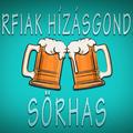 Mi okozza a sörhasat?