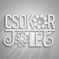 Kitartás=Siker – Motiváció – kiegészítő ötletek 2.rész