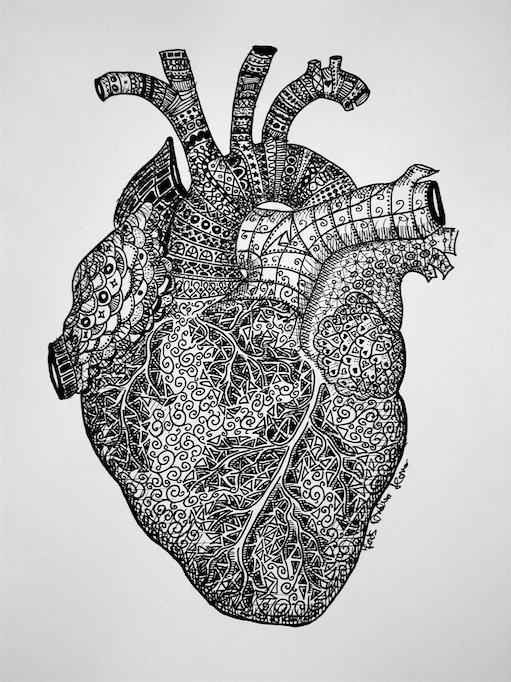 heart_anatomy_zentangle_joos_andrea_2.png