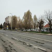 Egyelőre nem lesz zebra Szombathelyen a Hunyadi úti Lidlnél - írja a nyugat.hu