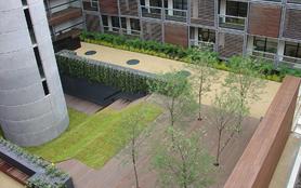Zöldfelület egy apartmanház közepén