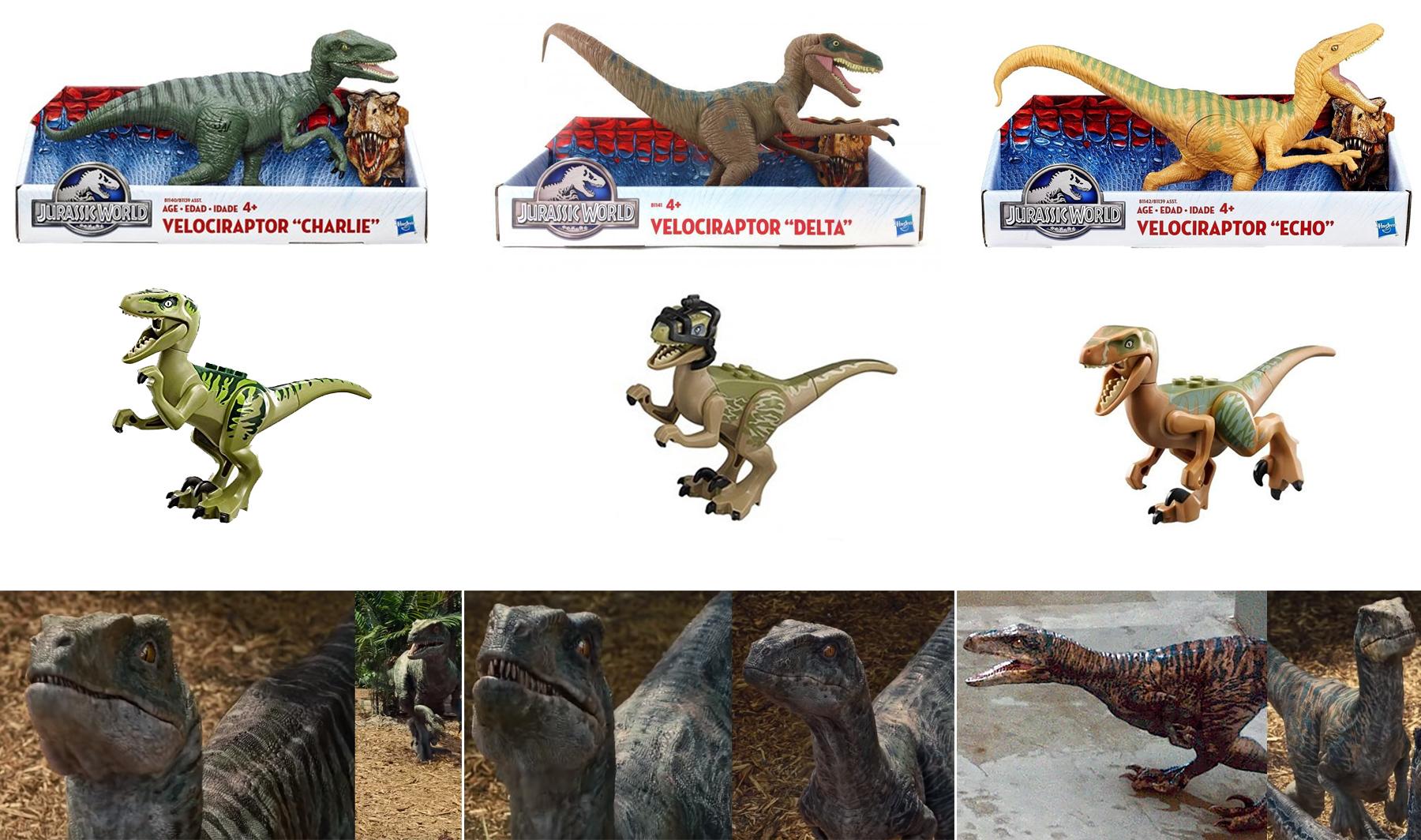 raptors_1.jpg