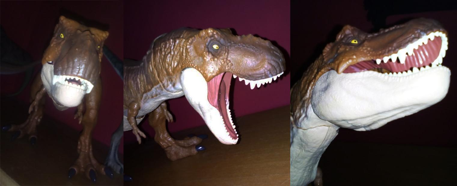 rexy06_1.jpg
