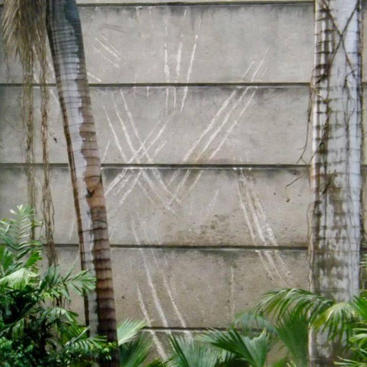 Az Indominus karmolásnyomait is megőrizték