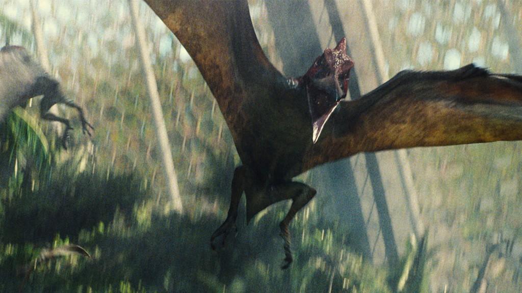 Ahogyan a Pteranodon is