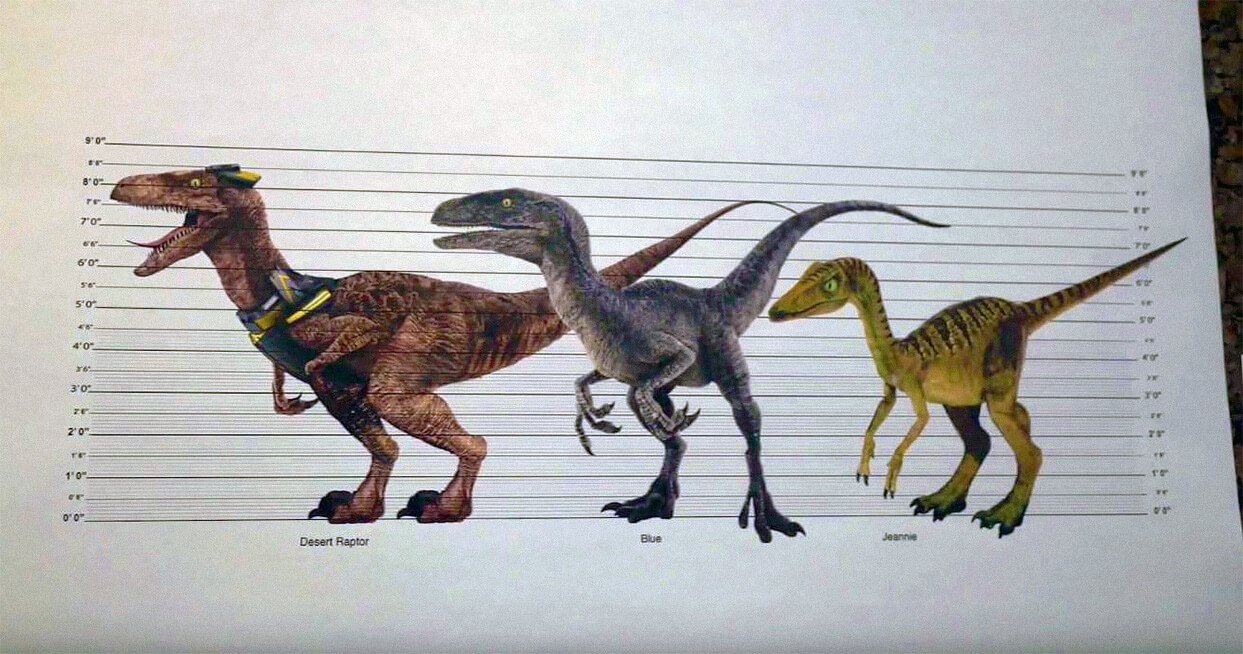 jurassic-live-tour-raptor-troodon-size-chart.jpg