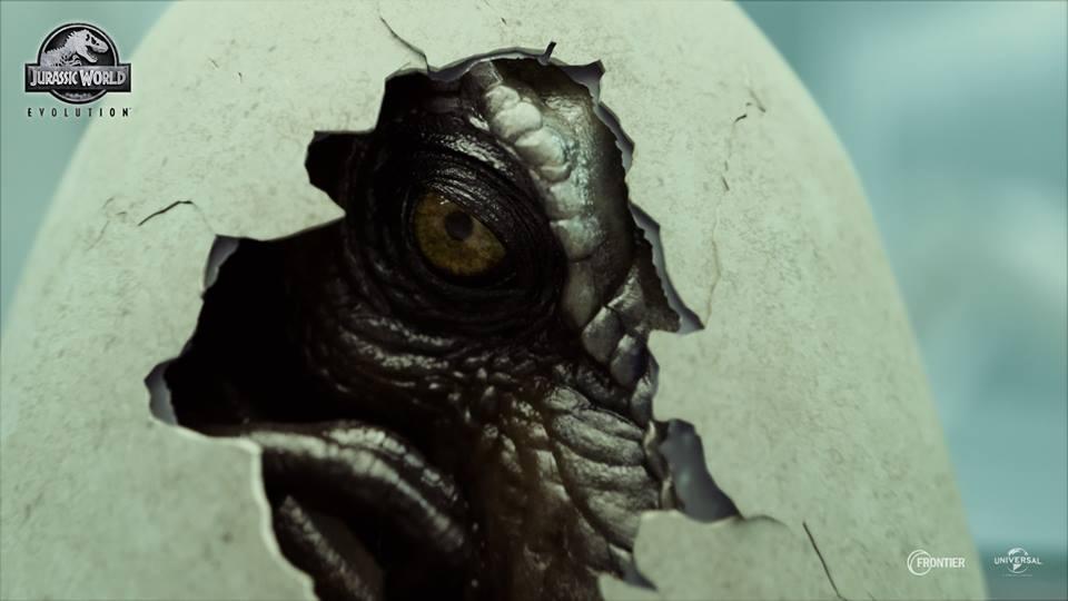 jwevo-rex.jpg