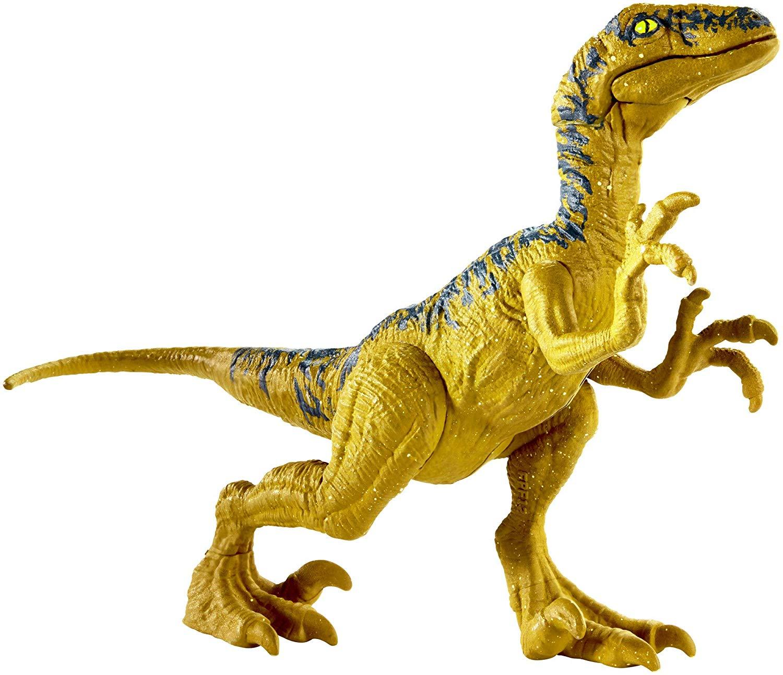 raptor01.jpg