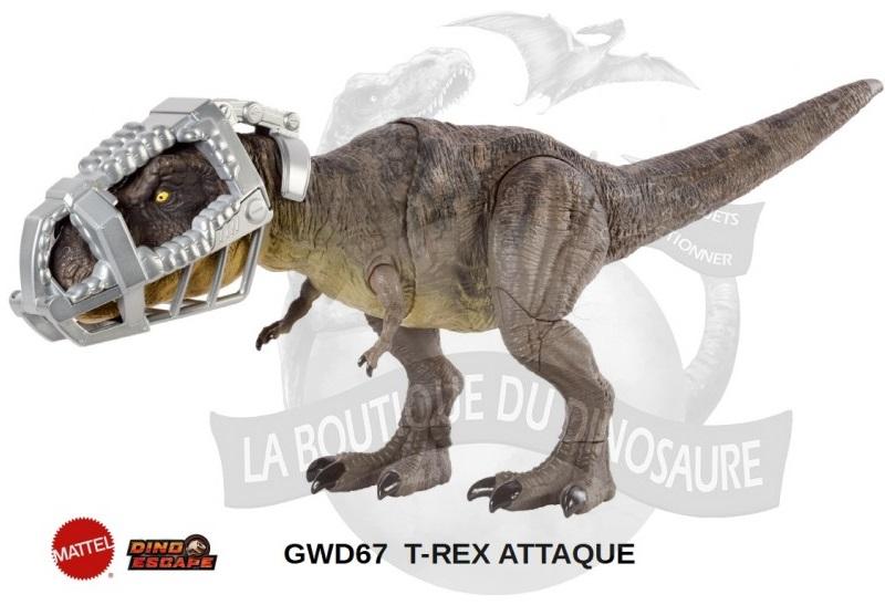 rex01_1.jpg