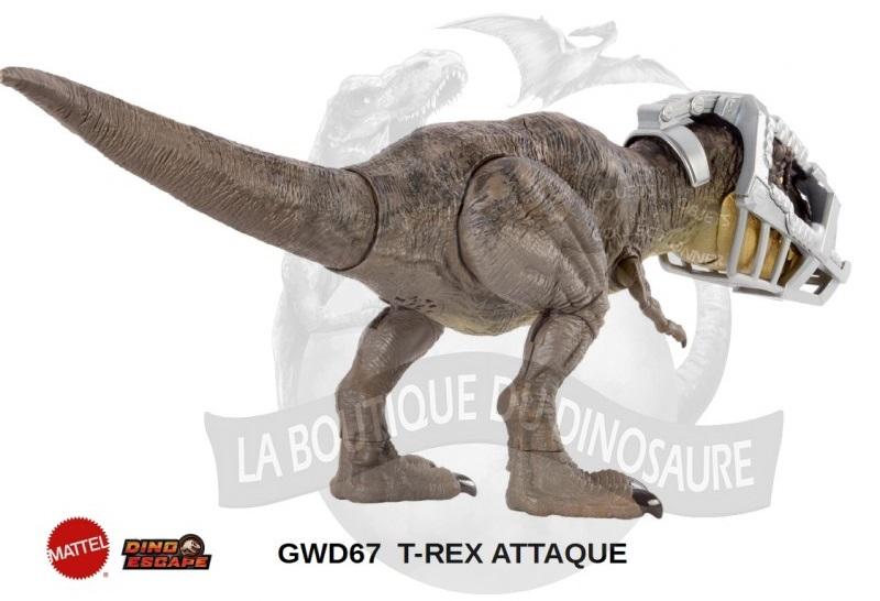 rex03_1.jpg