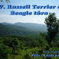 Felhívás: XV. Russell Terrier és beagle túra