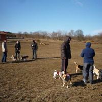 Élménybeszámoló: 2012.02.26. - Egri-vár (Pilisborosjenő)