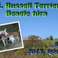 Felhívás: XVIII. Russell Terrier és Beagle túra