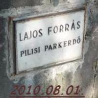 Élménybeszámoló : 2010.08.01. - Lajos forrás