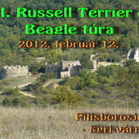 Felhívás: XII. Russell Terrier és Beagle túra