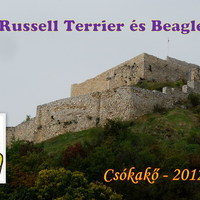 Felhívás: XIII. Russell Terrier és Beagle túra