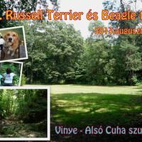 Felhívás: XXI. Russell Terrier és Beagle túra