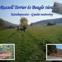 Felhívás: XVII. Russell Terrier és beagle túra