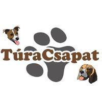 Felhívás: 35. Russell Terrier és Beagle túra