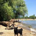 Beach boy #bütyökgram