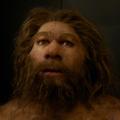 Boldog 150. születésnapot, Neandervölgyi!