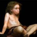 Nem mi irtottuk ki a Neandervölgyit