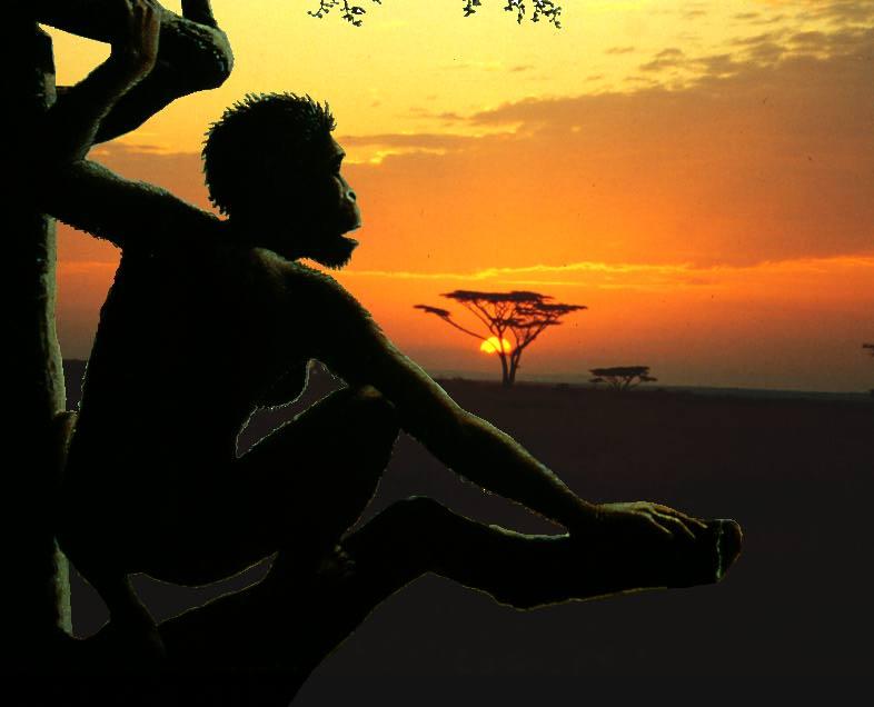 Australopithecus in Savanna.jpg