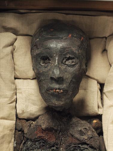 Head-of-the-mummy.jpeg