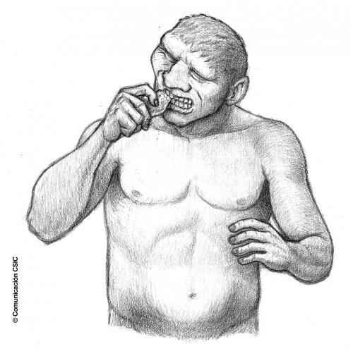 neanderthalg.jpg