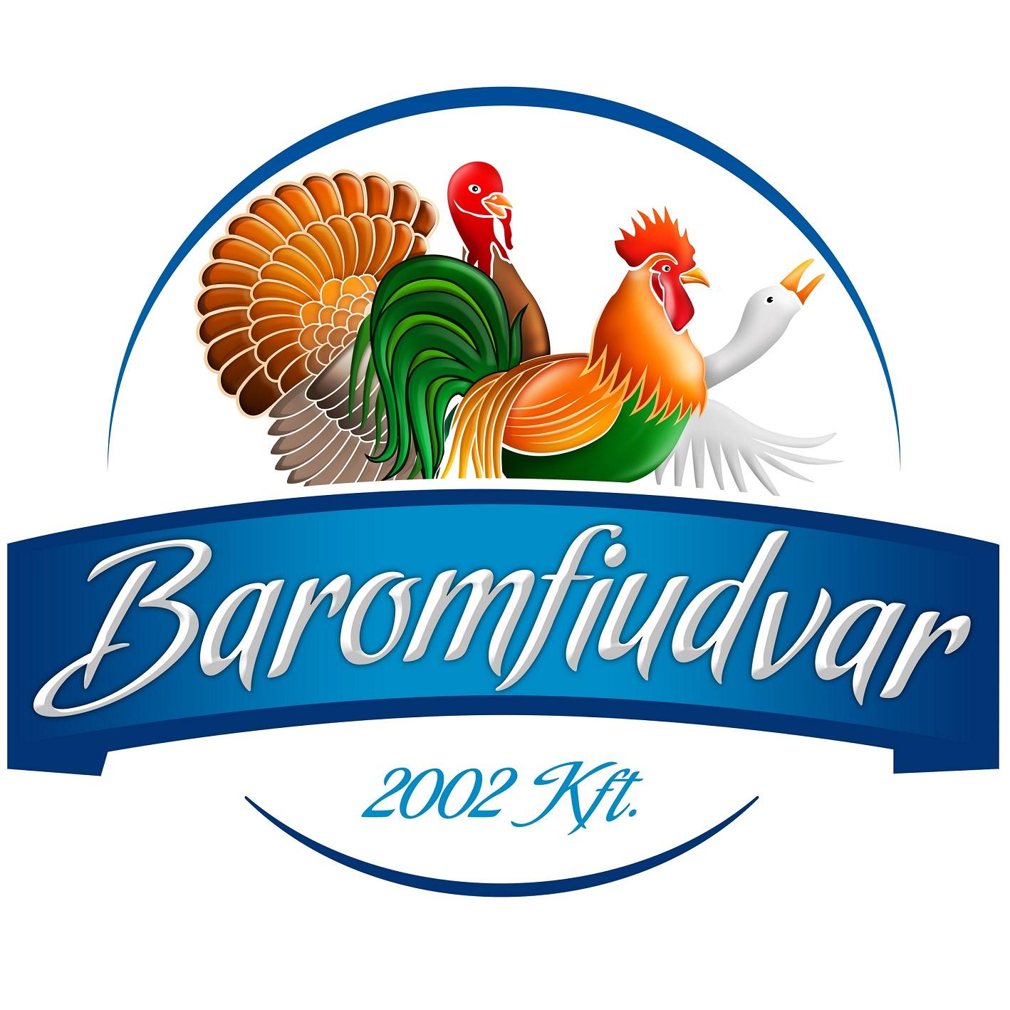 1350472848-bu-logo-vegleges-2012-05-24-25x25cm.jpg